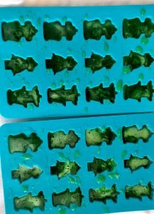 candy moulds